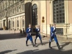 Swedish palace guards